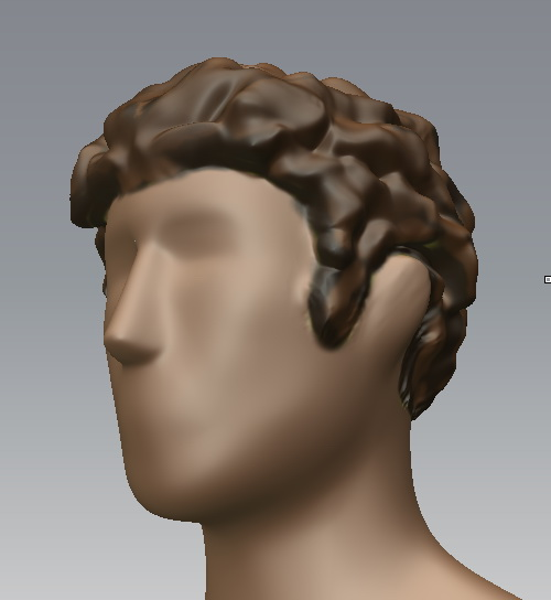Sculpting Hair